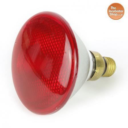 Infra Red Ruby Bulb 100w