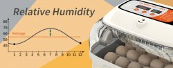 What's the correct humidity for hatching chickens?