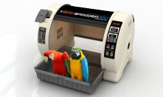 Bird Brooders and Parrot ICUs