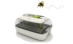 Queen bee cell incubators