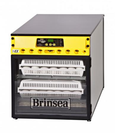 Brinsea Ova-Easy Advance Hatcher* Series II