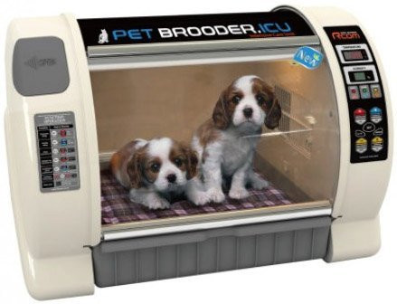 Curadle Pet Brooder ICU Max (Small)