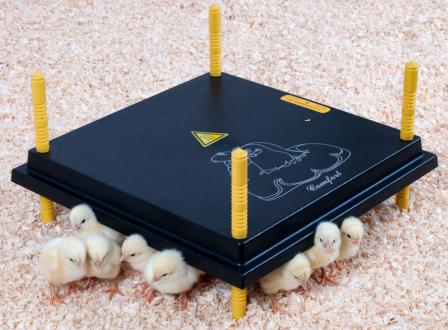 Comfort 40 Chick Brooder