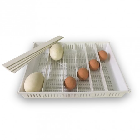 Brinsea Ova Easy Universal Egg Tray (includes dividers )