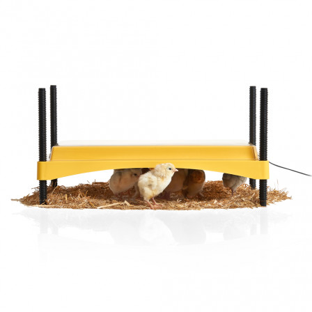 Brinsea EcoGlow Safety 1200 Chick Brooder