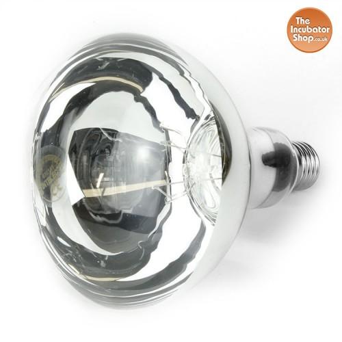 Clear Bulb 150w